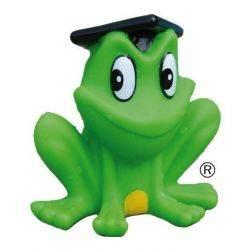 Freddy broscuta stropitoare Freds Swim Academy