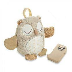 Jucarie Muzicala Nighty Night Owl On The Go Cloud B