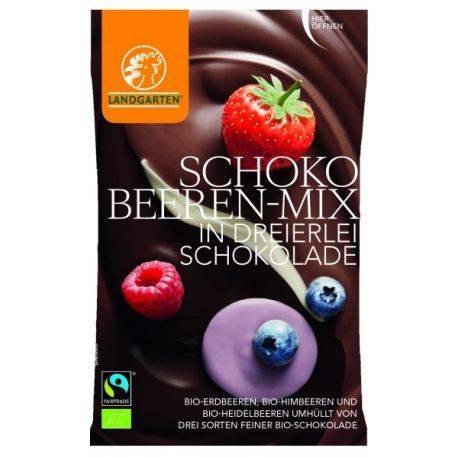 Fructe de padure in mix de ciocolata bio 50g Landgarten