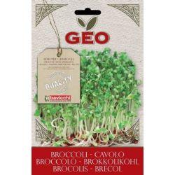 Geo - Seminte germinare broccoli bio x 13g